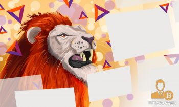 Lion Looking at Internet Tabs